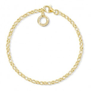 Armband - Charm, X0243-413-39-L15,5