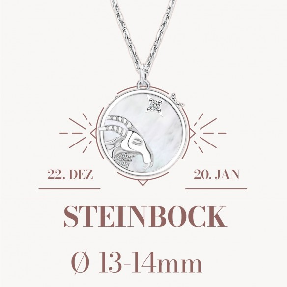 Sternzeichen Steinbock in 925 Silber mit Perlmutt und Zirkonia - ca. 13-14mm Größe
